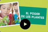 Projecte El poder de les plantes