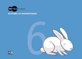 Quadern de matemàtiques 6